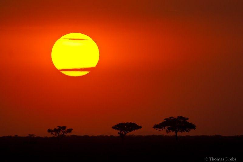 sunset in the serengeti