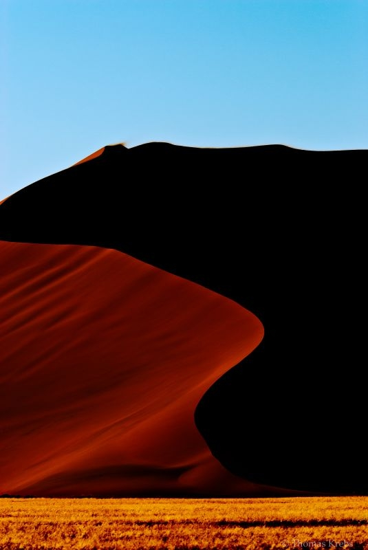 desert is calling