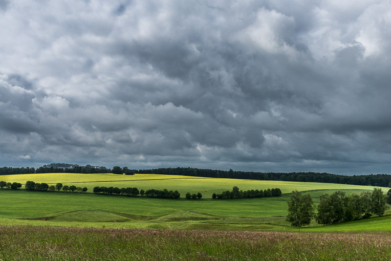 clouds over canola fields